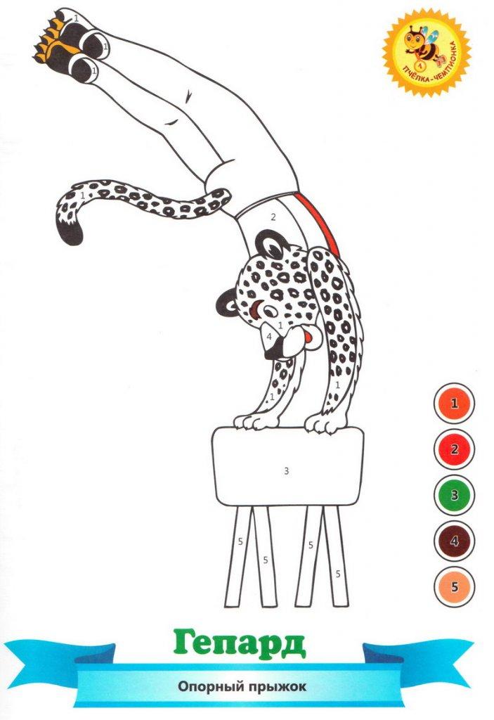 Раскраска с цифрами   Домашние игры